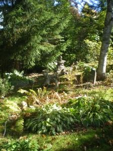 Gordon and Jackie's lovely garden