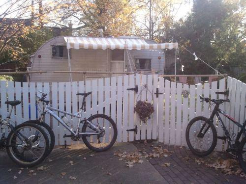 In friends Bob & Joann's back yard, Greensboro, NC