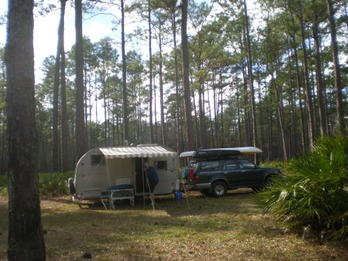Appalachicola State Forest, FL