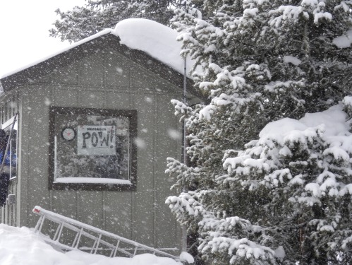 POW! for powder snow!